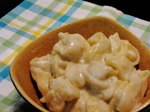 foto de um bowl com capeletti de queijo e molho de gorgonzola com vinho branco
