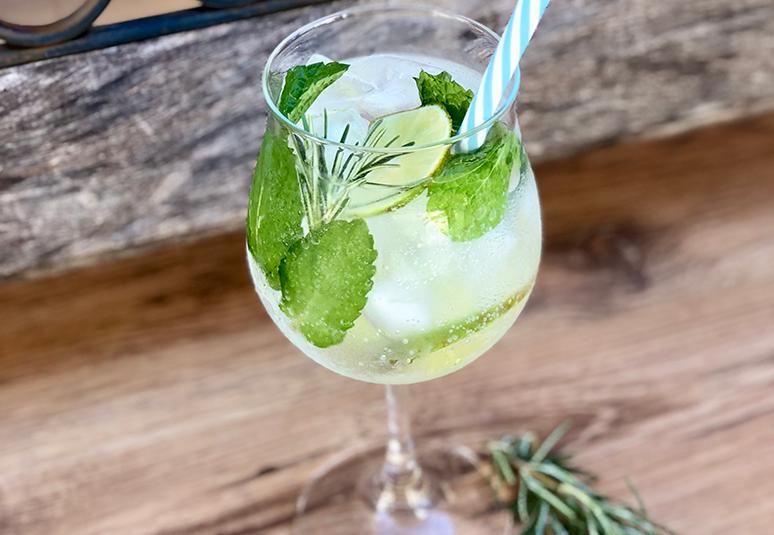 Receita de gin tônica com hortelã